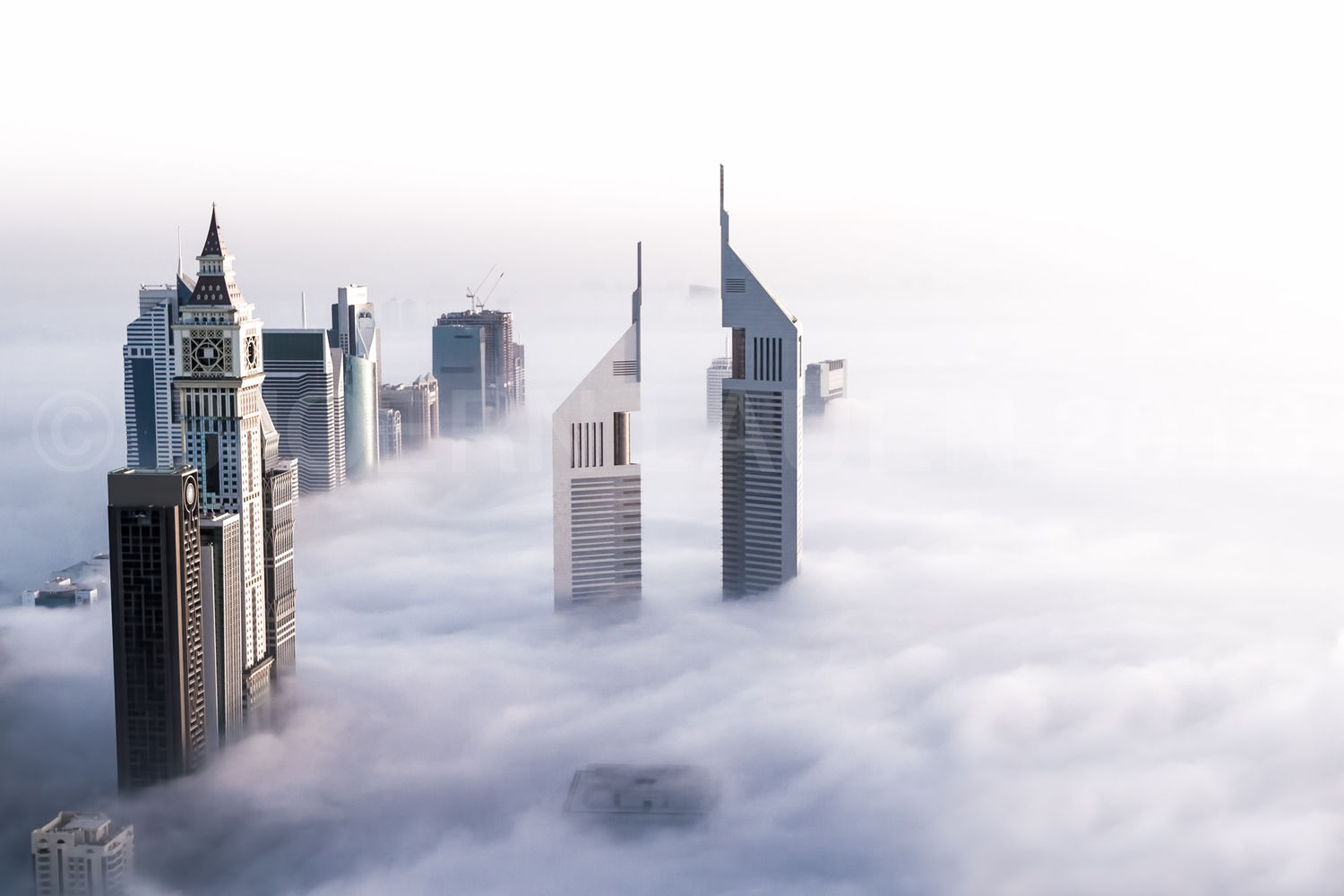 Jumeirah Emirates Towers and Sheikh Zayed Road covered in a thick bed of fog