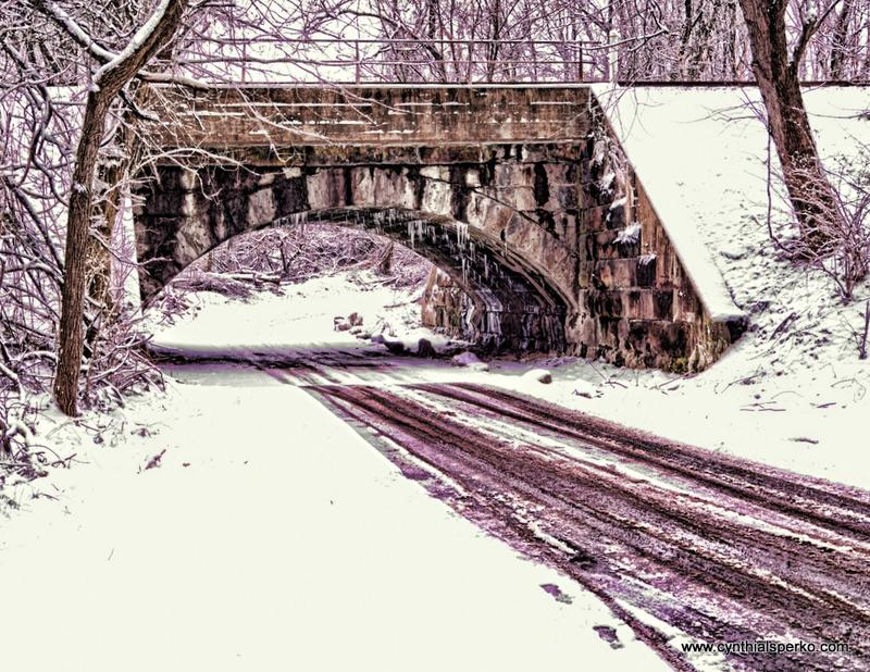 Cynthia L Sperko Photo Journal | The First Snowfall in Lancaster County PA