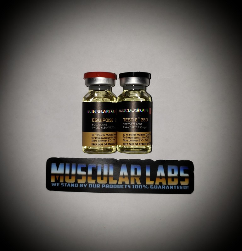 Muscularlabs-Equipoise 250mg/ml & Testosterone-E 250mg/ml stack
