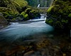 Wahclella Creek, OR