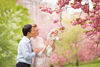 spring cherry blossom new york baby portraits