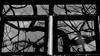 Enigmatic Window 01