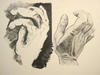 Analytical Drawing of a Hand