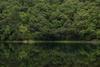 Sattal Estate lake, Uttarakhand
