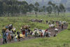 Thousands of people flee a refugee camp, Monday, Oct. 28, 2008 near Kibumba some 40 kilometers north of Goma in eastern Congo.