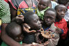 Children plead with aid workers to get coupons that will allow them to receive high energy biscuits at an at a clinic of the International Medical Corps at a displaced people's camp, Tuesday, Nov. 4, 2008 in Kibati north of Goma in eastern Congo.