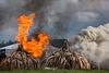 KENYA IVORY BURN