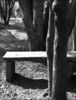 Stone Bench, Bangalore 2011   Edition 1 of 5