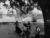 Respite from the Sun, Narthamalai, Tanjore 2014   Edition 1 of 5