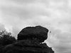 Flying over Monkeys, Badami 2013   Edition 1 of 5