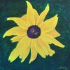 Blackeyed Susan (20x20x1.5 inches) Acrylic on Canvas 2017