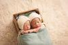 Newborn Photography in Hinderton Hall Estate, Cheshire
