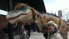 Russell T-Rex - Adam Zimmerman Productions