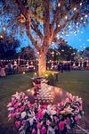 wedding photographer in jaipur