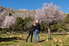 Love & Almond Blossoms. Couple Photoshoot at Finca Galatzo. Calvia, Mallorca
