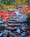 Duck Brook Falls