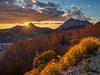 Lovcen national park