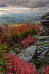 Rough Ridge Autumn