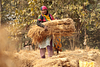 Young lady farmer carrying hay
