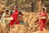 Women working as a farmer