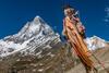 Shivling Peak,Trishul & Damru at Tapovan