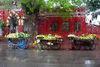 Rainy Days Vegetable Vendors | Ed: 2 of 10