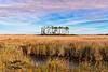 Marshes on Roanoke Island