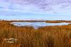 Roanoke Island Marshes