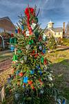 Cupola House Christmas Trees