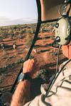 Landowner Spots the Herd