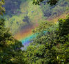 rainbow in the forest manipur 2011