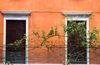 window, venice 2013