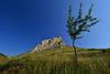 Cetatea Trascaului (Cetatea Coltesti) 0003