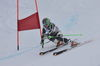 Schi alpin 0004