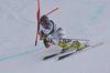 Schi alpin 0003