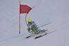 Schi alpin 0006