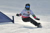 Snowboard 0003