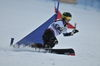 Snowboard 0016