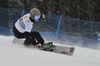 Snowboard 0023