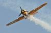 Spectacol aviatic 0001