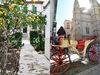 Palma of Mayorca Photo Gallery.