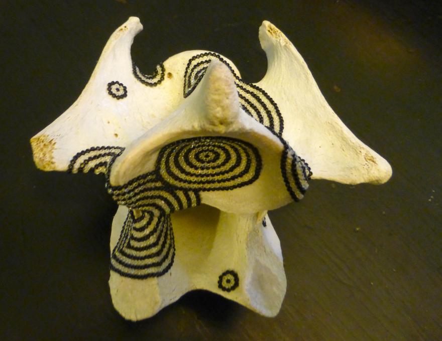 cow vertebra