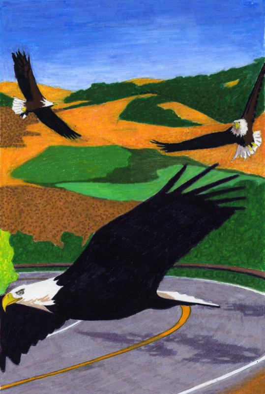 Road Eagles