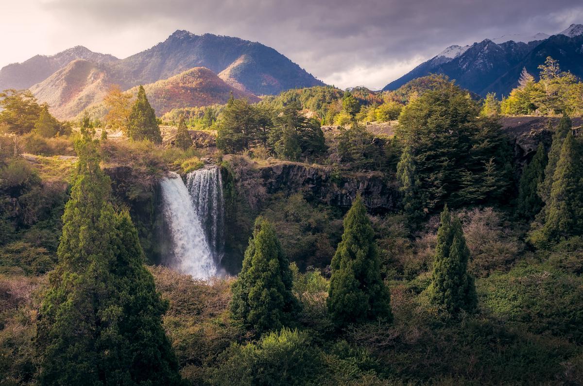 Una cascada en medio de los arboles