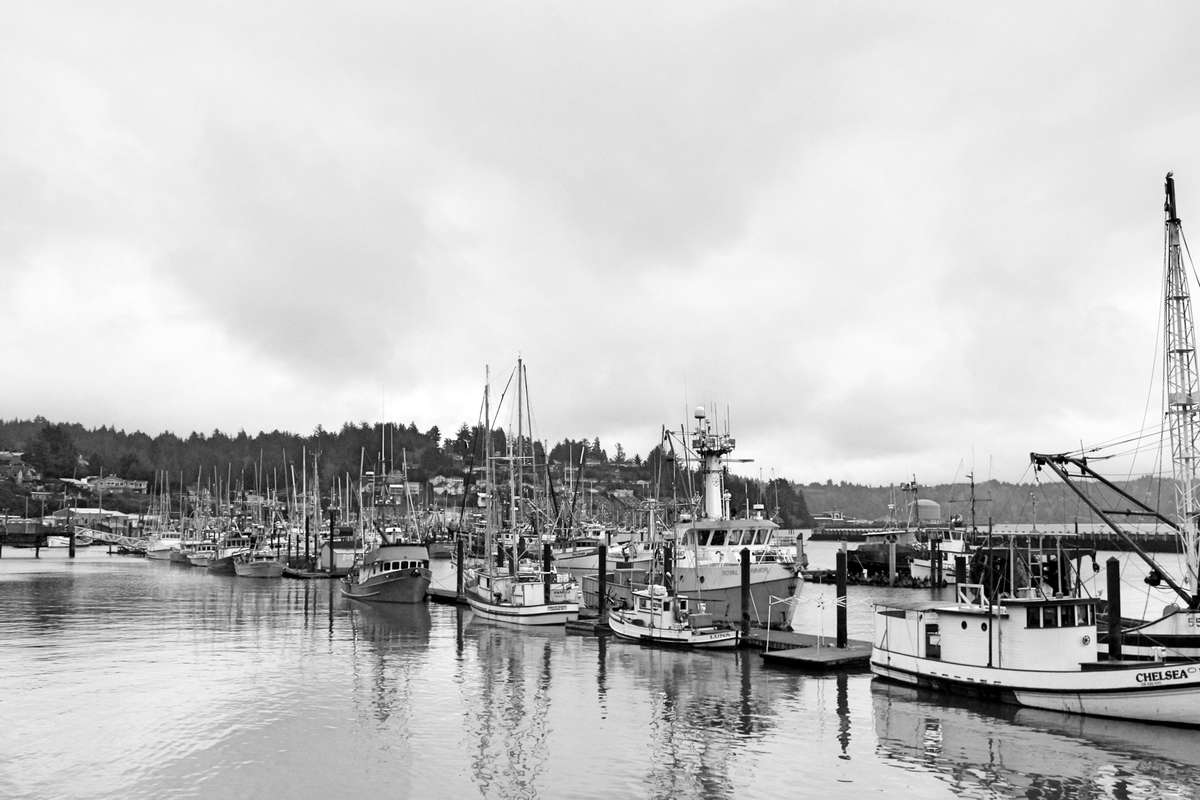 Marina - Newport, Oregon
