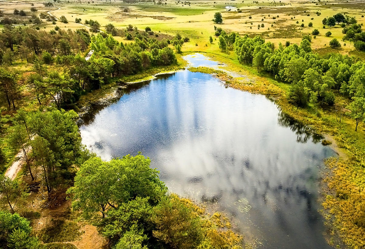 Strabrechtse Heide