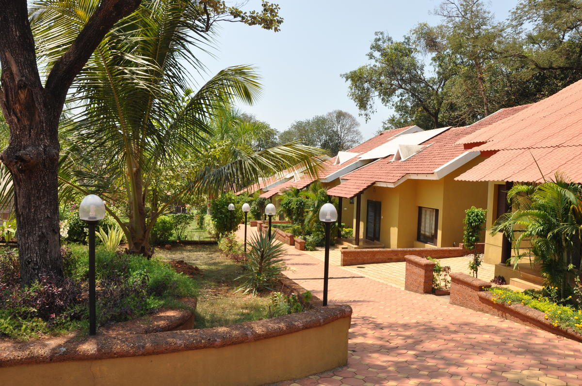 row housing, goa