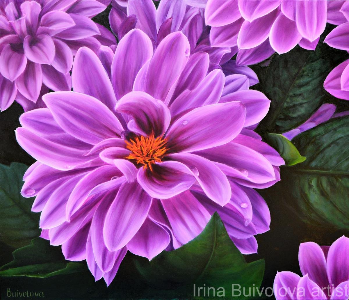 Purple dahlia oil on canvas size 60 70 cm