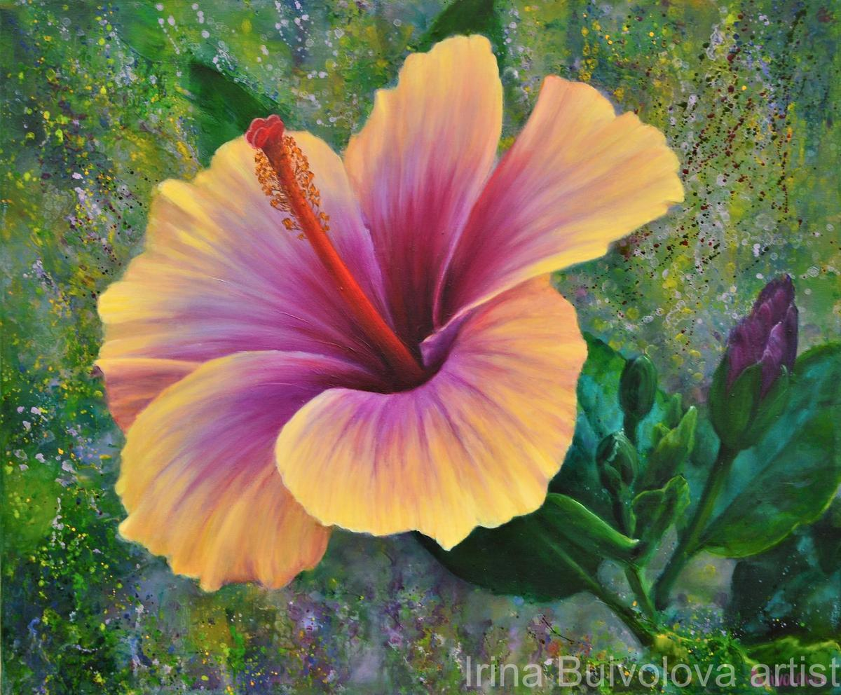 Hibiscus painting ,oil on canvas size 50 60 cm