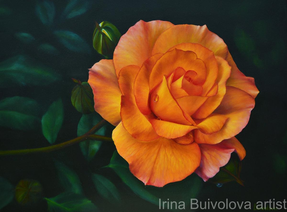 Branch of orange rose painting oil on canvas size 60 80 cm